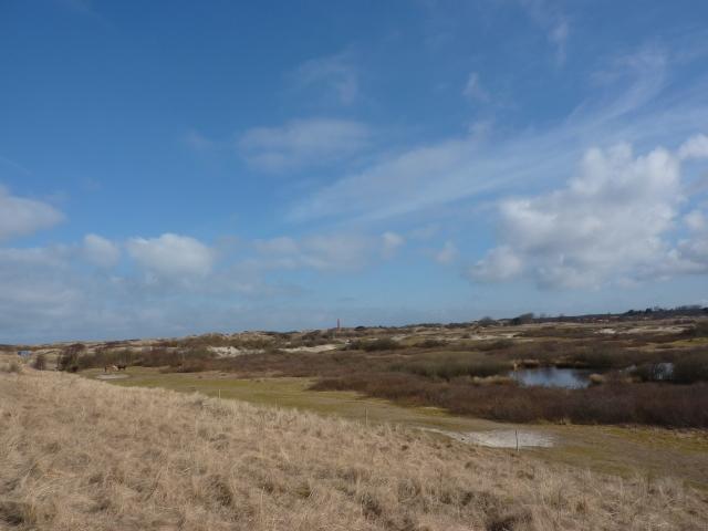Westerduinen Schiermonnikoog