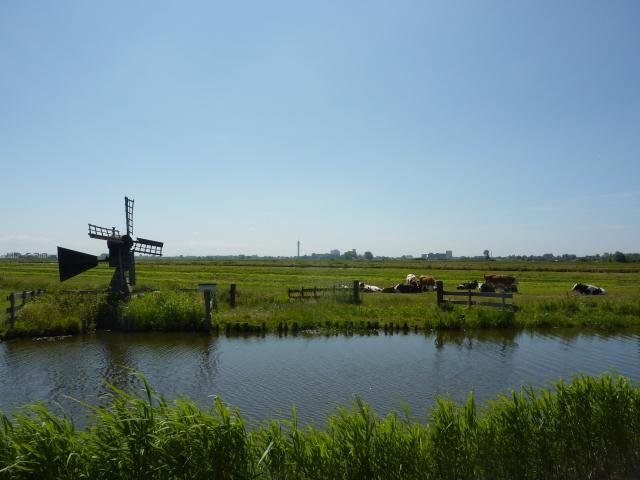 Tussen Knollendam en Spijkerboor, zicht op Polder Wormer, Jisp en Neck