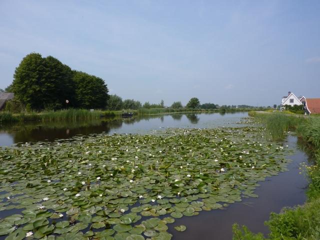 Rivier Holendrecht