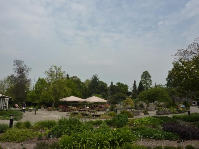 Terras Botanische Tuinen Utrecht