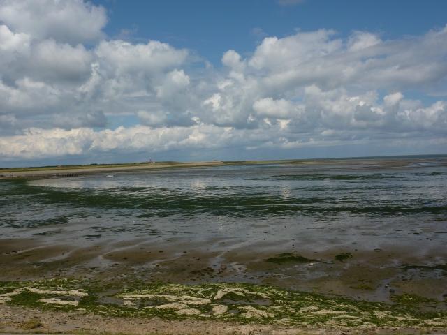 Zicht vanaf de Waddendijk op de vuurtoren van Texel