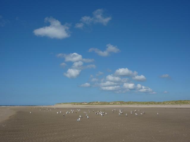 Strand bij paal 9, Texel