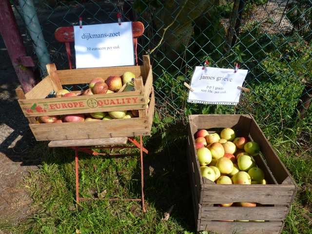 Appels te koop langs de Linge