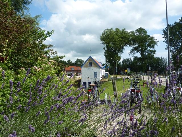 Onze fietsen naast het lavendelrijke terras van de Kop van 't Land
